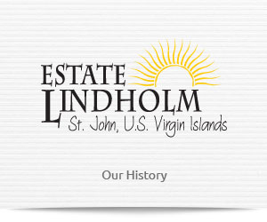 Estate Lindholm B&B inn on St John, US Virgin Islands accommodations and hotels